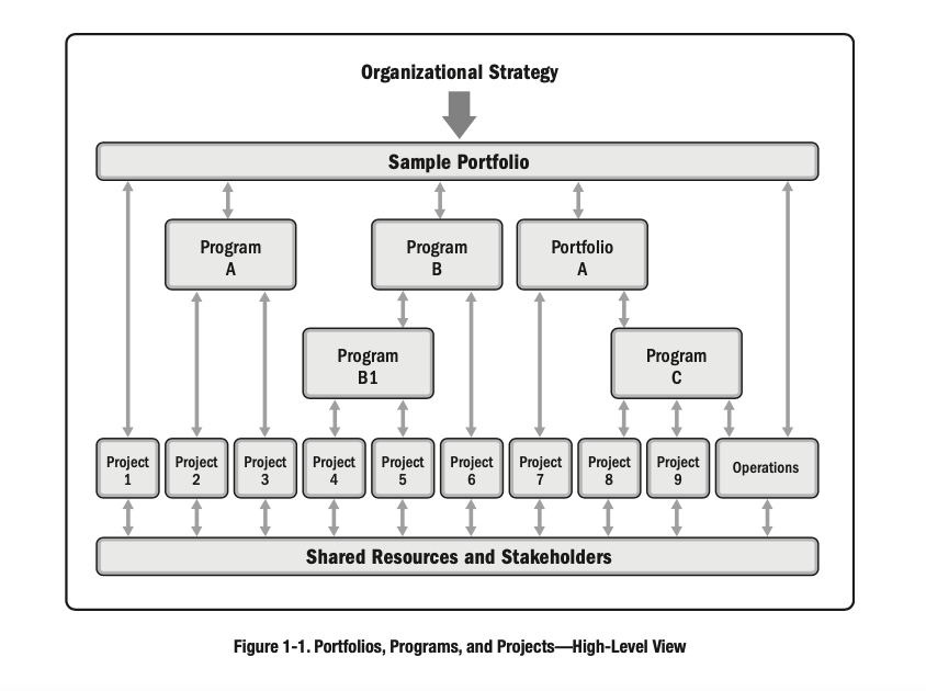 portfolios programs and project